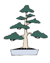 Bonsai_Formal_Style